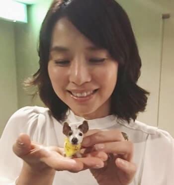 犬の人形を持つ女優・石田ゆり子