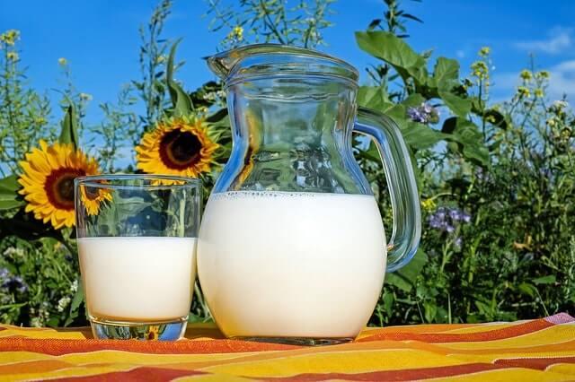 ひまわり畑と牛乳
