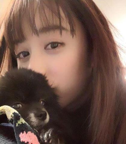 犬を抱いているモデル・山本美月