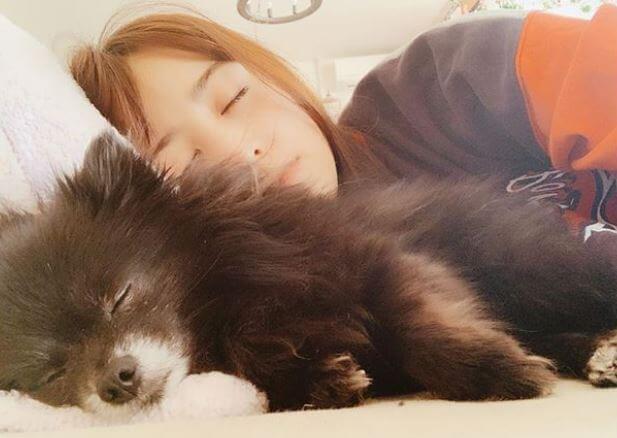 犬と一緒に寝るモデル・山本美月