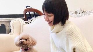 犬とじゃれあう女優・吉岡里帆