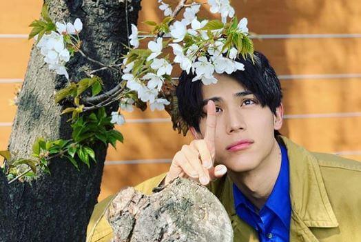 木に咲く白い花を触る俳優・中川大志